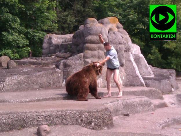 Mężczyzna wszedł na wybieg niedźwiedzi (Zdjęcie serwisu Kontakt24 TVN)